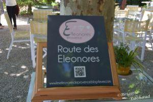 les-eleonores-Fayence250613-BL-005.JPG