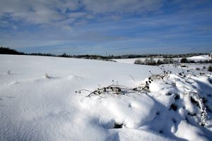 Umland:Landschaft 1077b
