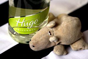 38 - Hugo 0772