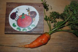 jardins-printemps2012 0003