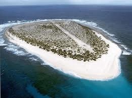 Les Naufragés de l'île Tromelin de Irène FRAIN ♥ ♥ ♥ ♥ - LECTURES AUX 4  VENTS