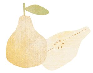 illustration-poire.jpg