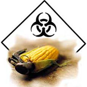 monsanto-toxic[1]