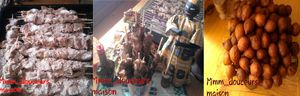 Photo2384M---Copie-copie-1.jpg