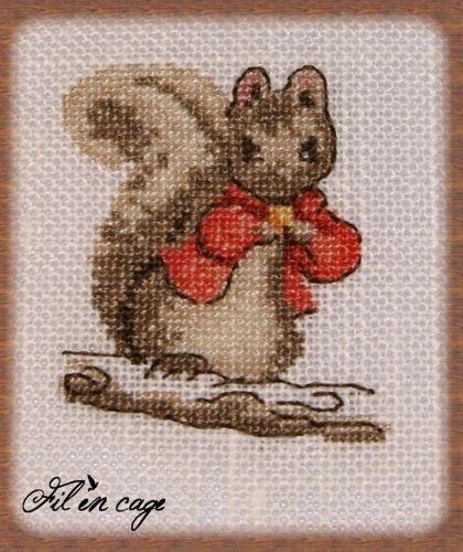 écureuil (504 x 600)