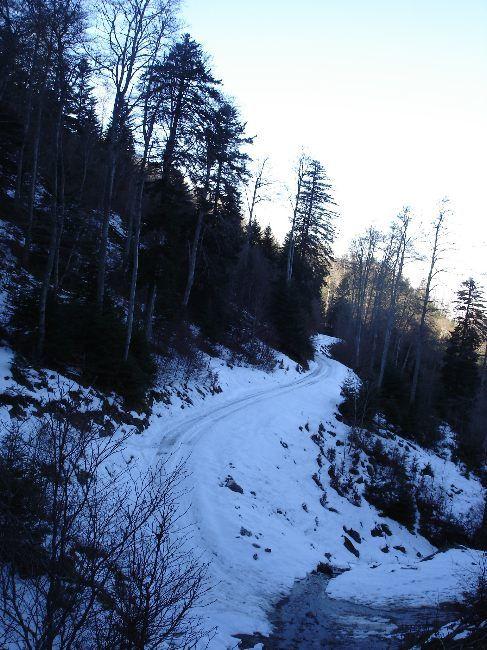 Vers le Pic du Gar : le col des Ares (797 m) 13