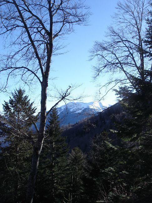 Vers le Pic du Gar : le col des Ares (797 m) 14