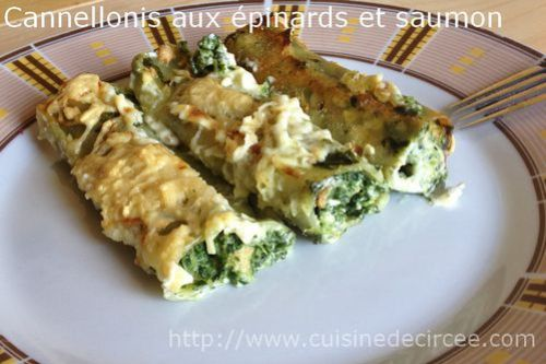 cannelloni épinards saumon 06