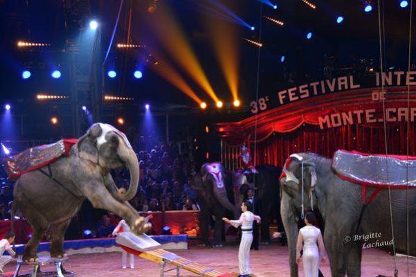 Monaco-Festival-du-cirque-
