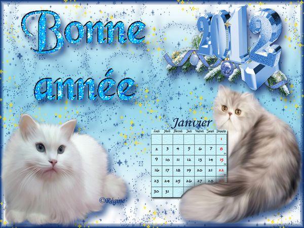 01-janvier-2012.jpg