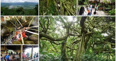 台東秘境 鸞山森林博物館 會走路的樹/阿凡達的原鄉 預約方式~十二生肖電影場景,爬樹吃原住民風味餐