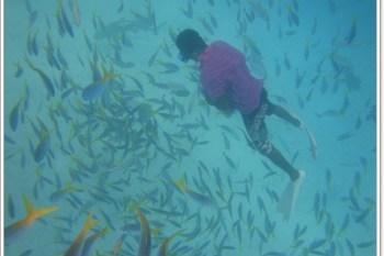 帛琉 鯊魚城&百年干貝城~阿一一帛琉藍色海洋之旅