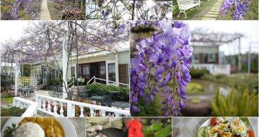 新北淡水 紫藤咖啡園 南洋咖哩雞肉飯~限時一個月的紫色夢幻