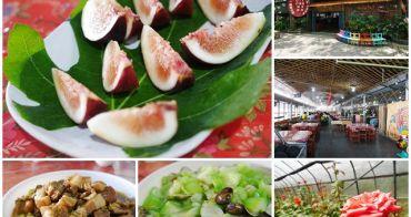 新竹峨眉美食 十二寮休閒農園 客家菜/擂茶體驗~品嚐自家種的優質蔬果,聚餐玩樂好選擇
