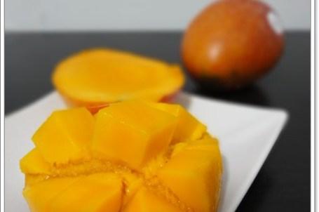 [試吃]真鮮美食通 屏東枋山盧家芒果~美食嘉年華系列