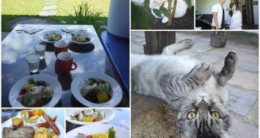 南投埔里 微笑58民宿~營養幸福早餐和可愛貓咪