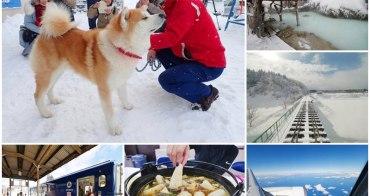 秋田自由行懶人包 戀戀秋田犬主題路線~超萌狗狗、樹冰,溫泉與美食的豐饒之地