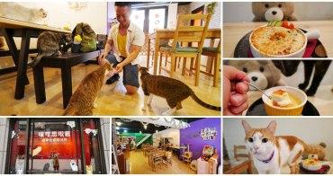 咪可思啾芭-貓中途寵物餐廳 捷運三重站美食 成為貓界超級巨星~跟喵喵玩吃美食