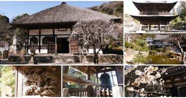 鐮倉景點 圓覺寺~鎌倉五山第二位,夏目漱石參禪之處
