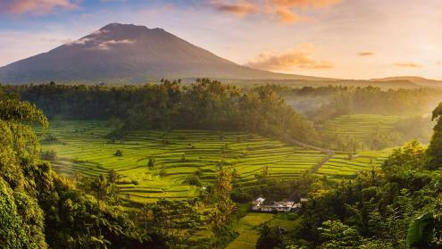 Rice fields in the Sidemen Valley, with Mount Agung in the background, Bali, Indonesia - Bing Gallery