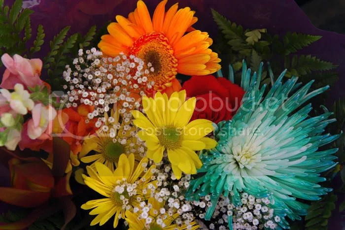 Bouquets of flowers from Montreal pics by Arun Shanbhag