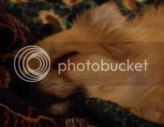 Sleeping peaceful