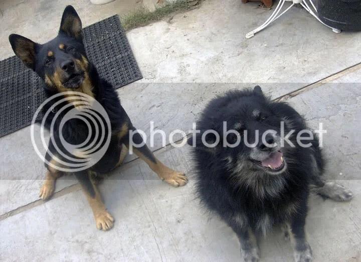 Max and Deja