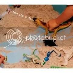Guillemots - From The Cliffs
