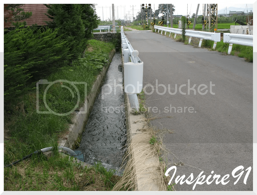 fontinalis stream