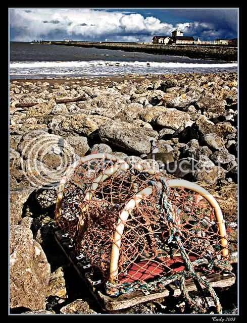 Lobster Pot, South Shields