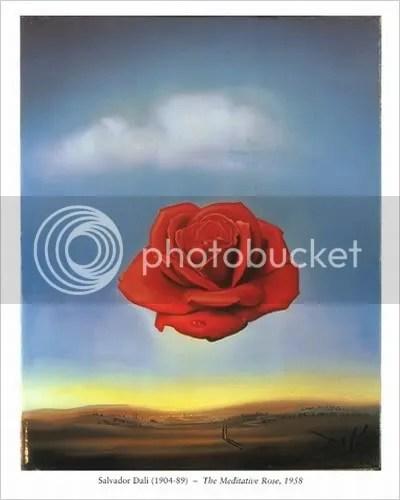 Meditative Rose, by Salvador Dali