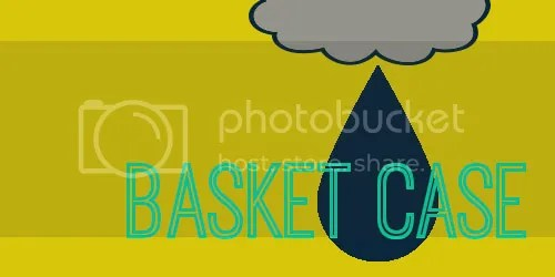 photo basket.jpg