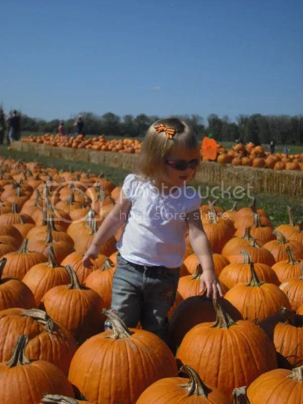 Hiding among the pumpkins