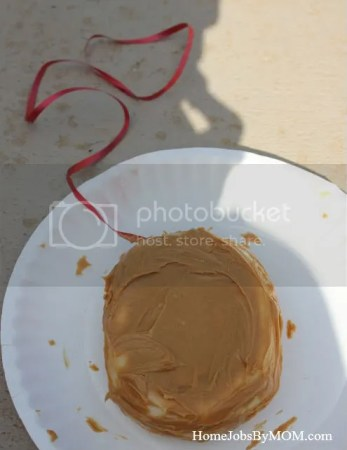 peanut butter covered bagel