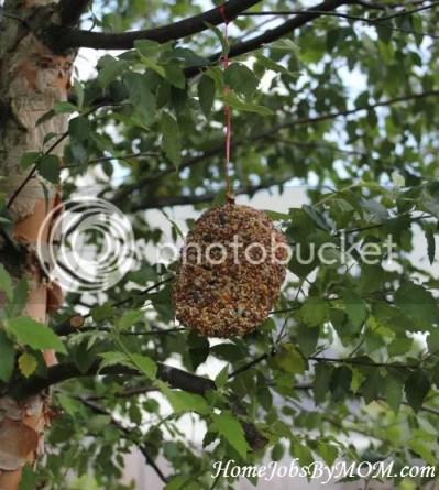 homemade natural bird feeder