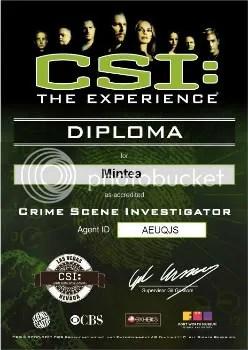 CSI diploma