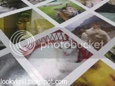 kitty stickers