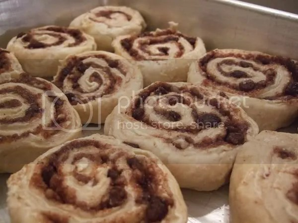Cinnamon rolls before the second rise.