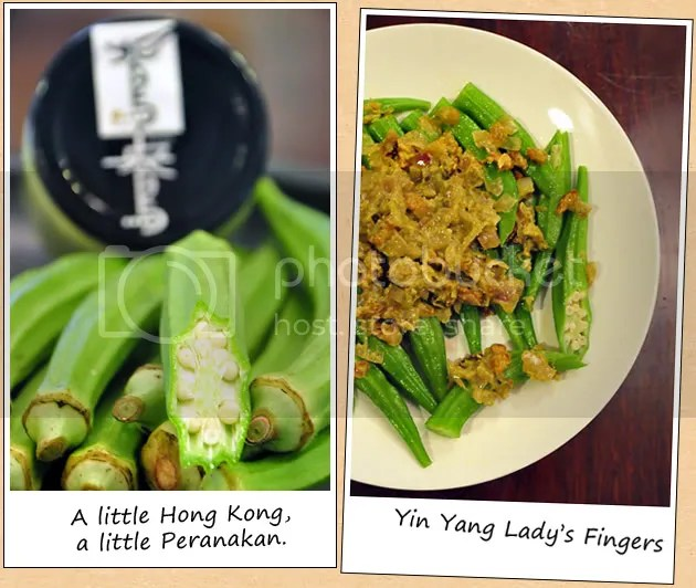 Yin Yang Ocra