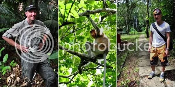 Searching for Proboscis Monkey