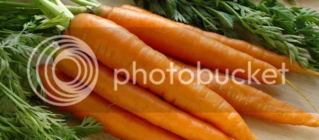 photo Kripalu_Carrots_zpsyy43r8yq.jpg