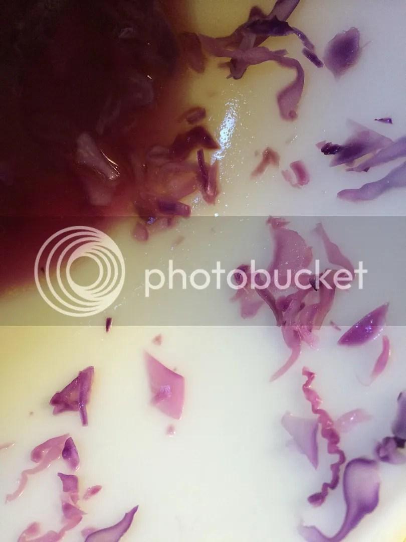 photo photo2_zps9b6c17ee.jpg
