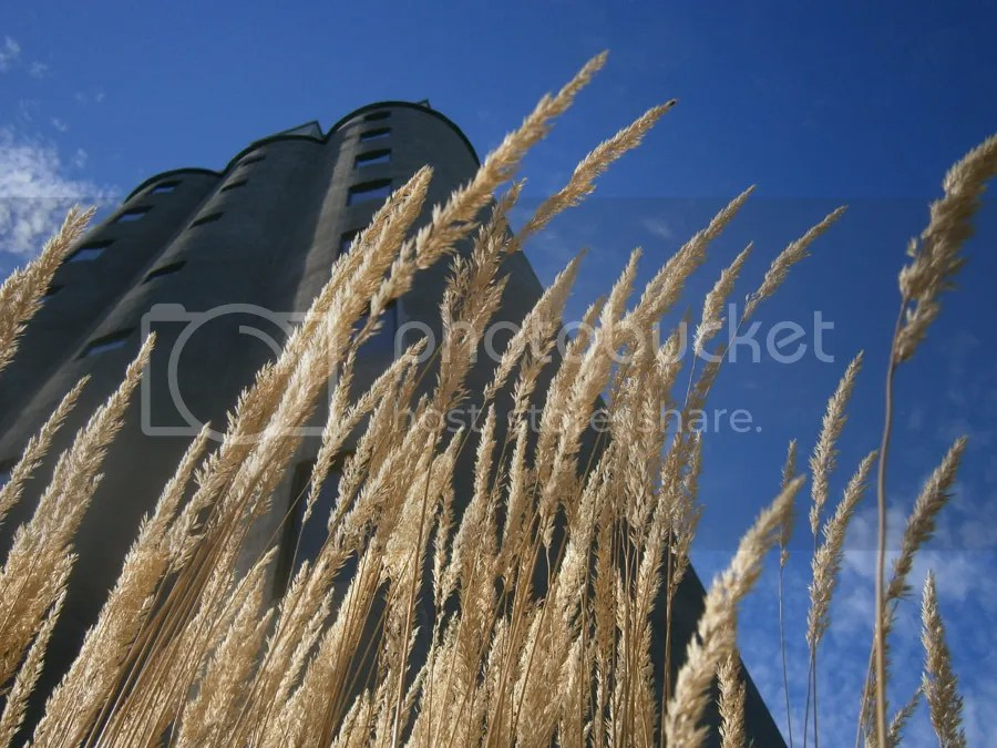 photo Pittsford Willage Grain Elevator_zpsjrofawre.jpg
