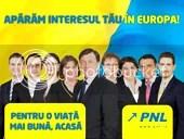 pnl,alegeri europarlamentare