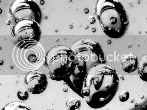 Macro waterredux by Piddy77