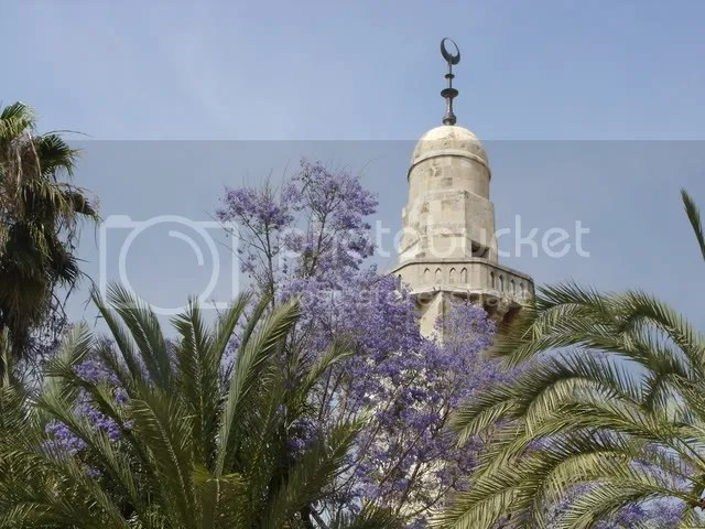 Beautiful mosque, beautiful purple flowers