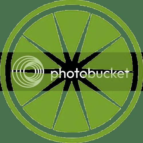 photo Logo_Piper-Lime_designed-by-Studio-Hinrichs_dian-hasan-branding_SF-CA-US-2_zps2fe41cdf.png