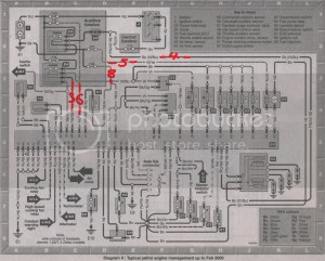 18 zetec into mk4 13 hcs wiring help! : Technical