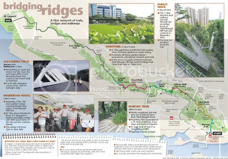 Bridging Ridges Information (save image to view it in full size)