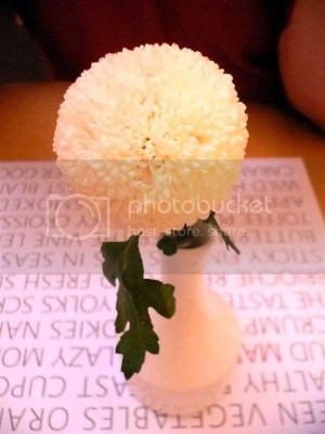 Cute flower on the table. Does anyone know what flower is this?